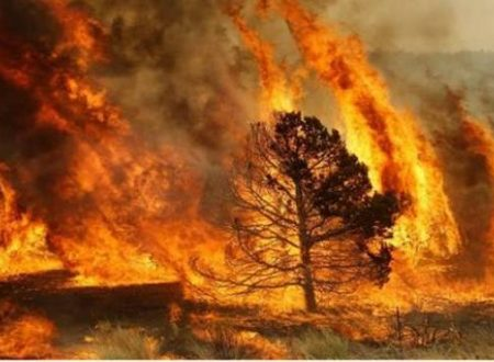 """I momenti del terrore di questa estate per gli incendi: """"Ho visto la disperazione sul volto di chi temeva per la propria casa"""""""